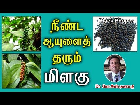 நீண்ட ஆயுளைத் தரும் மிளகின் மருத்துவ பயன்கள்| Amazing Health Benefits of Black Pepper (piper nigrum)