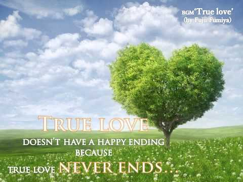True Love (Instrumental / composed by.Fujii Fumiya)