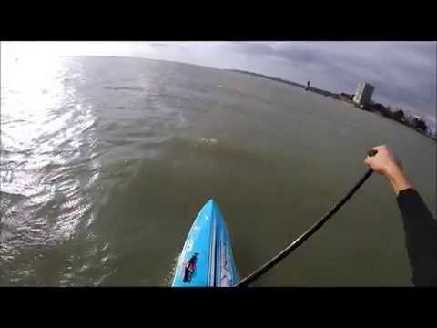 downwind stand up paddle Direct Sailing Team