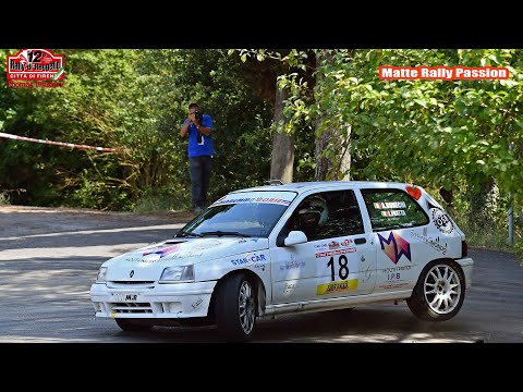 Best Of Renault Clio Williams & Maxi | CRASH, SHOW & PURE SOUND
