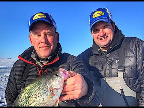 Lake Oahe Ice Crappie