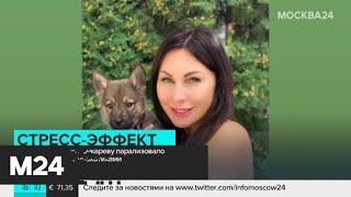 Смотреть видео Актрисе Бочкаревой стало плохо после скандала с наркотиками - Москва 24 онлайн