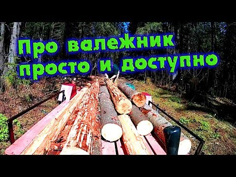 Вопрос: Можно ли собирать валежник в лесу с бензопилой?