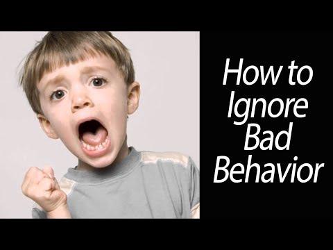 How to Ignore Bad Behavior - Denise Barney (3/3)