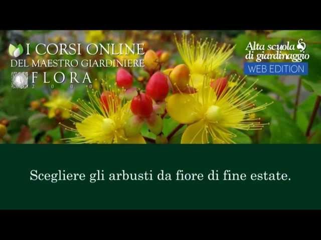 19 Trailer corso Scegliere gli arbusti da fiore di fine estate