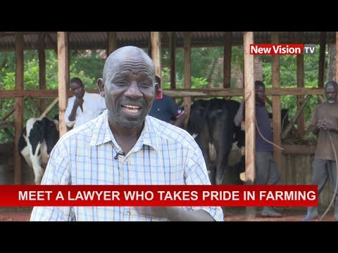 Meet a lawyer who takes pride in farming