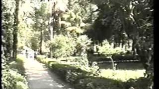 Egypt - 1996: BOTANICAL GARDEN By Cosmin Dumitru