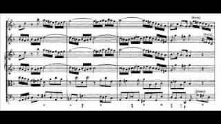 J.S. Bach - BWV 1043 - (1) Vivace d-moll / D minor