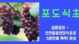 [포도식초] 설탕없이~100%발효 현미식초로 뚝딱! 5…