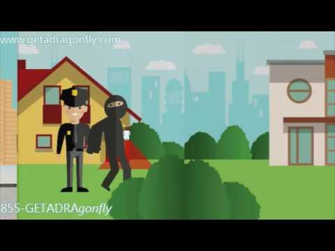 Manhattan DIY Security System | Get a Dragonfly