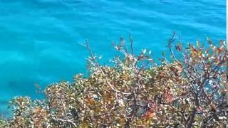 Мыс Фиолент   вид сверху  Море необыкновенно  голубого цвета(, 2015-03-10T07:14:05.000Z)