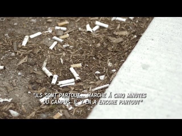 Smoke-Free Campuses:  Environmental Impact French