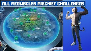All Meowscles' Mischief Week 6 Challenges Guide! - Fortnite Chapter 2 Season 2