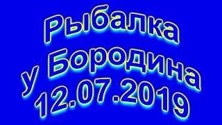Рыбалка у Бородина 12 07 2019