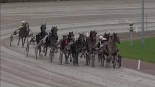 Vidéo de la course PMU PRIX CROATIE D'AMOUR