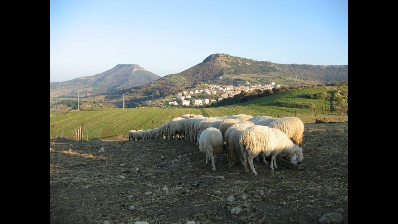 La Sardegna dei pastori il paesaggio della longevit  YouTube