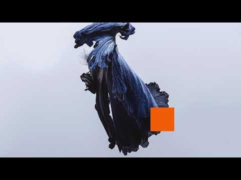 Talos - Let Go (Audio) Mp3