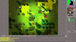 [Tibia 15 Years] Mirade, Rejana and Tjured