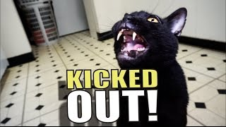 Repeat youtube video Talking Kitty Cat 51 - Kicked Out!