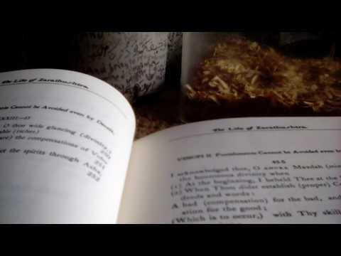 The Life of Zoroaster Avesta Gathas English Translation by Kenneth Sylvan Guthrie 1