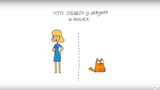 Что общего у девушек и кошек