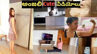 Actress Anjali cute videos|Heroine Anjali Latest News|Tollywood Actress Anjali Latest Updates