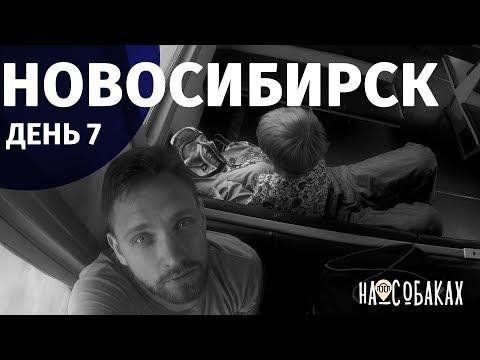 На собаках. Глава 8. Барабинск. Новосибирск. Неделя в электричках: плюсы, минусы, жимолость, окунь.