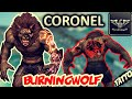 Download Wolfteam Latino | Ascendiendo a CORONEL Junior (Halcón) - Tochy in Mp3, Mp4 and 3GP