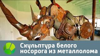 Скульптура белого носорога из металлолома | Живая Планета