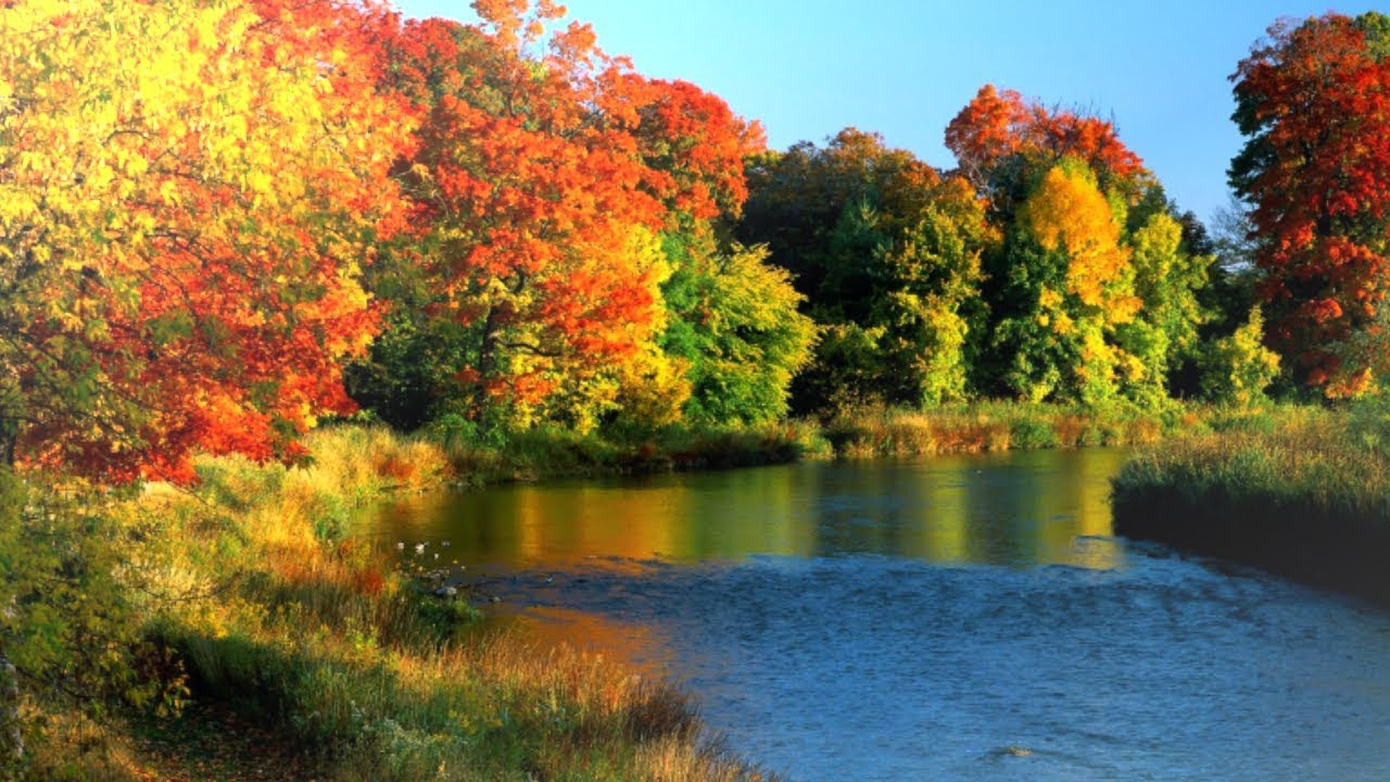Красивая Музыка для Души   Осень Музыка Осень Спокойствие... Полезное - Осень