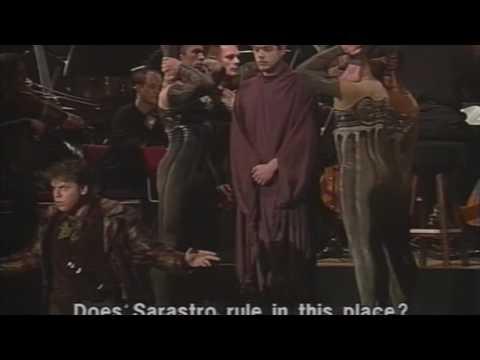 Michael Schade - Die Zauberflöte  1995