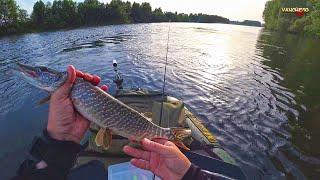 Ловля щуки и окуня в траве Рыбалка с напарником с одноместных лодок