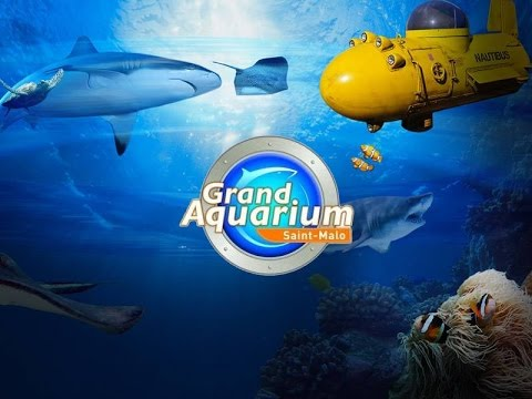 aquarium de saint malo - vlog manzabull'
