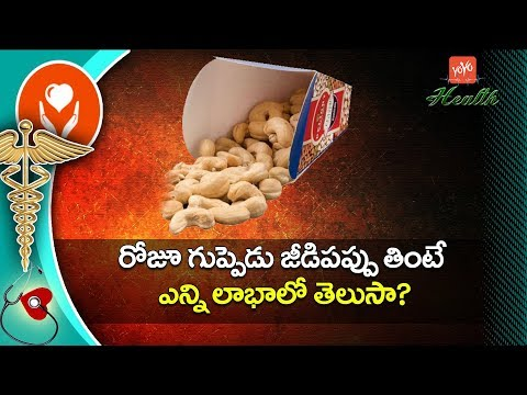 రోజూ జీడిపప్పు తింటే..? | Best Benefits of Cashew Nuts | Health Tips in Telugu | YOYO TV Health
