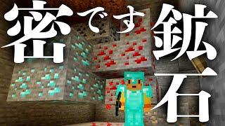 洞窟探検でまさかのマナー違反発見!?∑(゜Д゜) ほのぼのマイクラゆっくり実況  PART620 【マインクラフト】