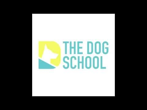Dog training in Qatar [BITE ON COMMAND--(basic control)]