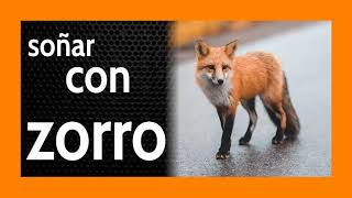 Soñar con Zorro 🦊 Revisando Amistades... 👿