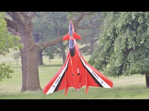 "* 3D VECTORED THRUST * ""ROOKIE"" AMAZING RC CANARD DELTA WING - CARF MODELS AT WESTON PARK - 2017"