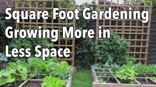 Pied carré de Jardinage (SFG): une Croissance Plus dans Moins d'Espace