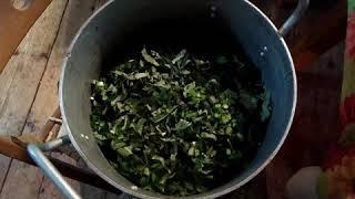 Заготовка для зелёных щей на зиму