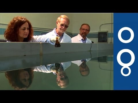 Kill The Spill: Oil-Eating Bacteria Vs Pollution - Futuris