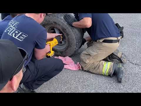 Wheelie Pup Gets Rescued A Riverside County Animal Services Video Short January 22 2020