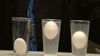 !!FLOAT AN EGG IN THE MIDDLE OF WATER!! (DENSITY COLUME) SCIENCE EXPERIMENT