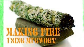 Using Mugwort For Fire