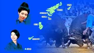 奄美航路 大島ひろみ オオシマヒロミ 検索動画 3