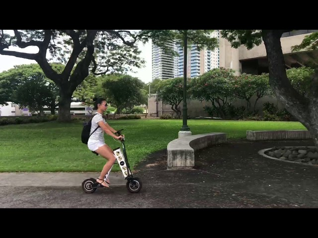 URB-E Hawaii - Downtown Historical Ride