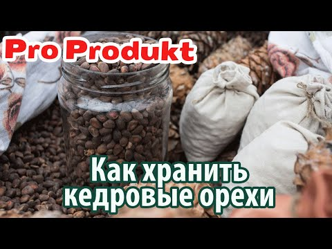 Как хранить кедровые орешки в домашних условиях в квартире