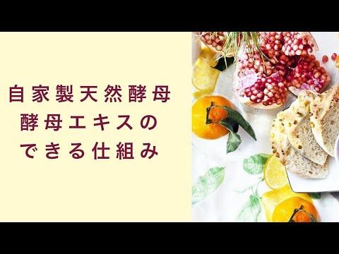 【自家製天然酵母】酵母エキスができる仕組みとは フルーツ酵母 自家製天然酵母 パン教室 教室開業 大阪 奈良 東京 福岡 名古屋