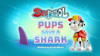 Щенячий патруль | 4 сезон 16 серия (А) | Sea Patrol:Pups Save a Shark