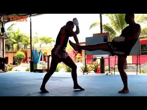 The Traditional Martial Art: Muay Boran Class